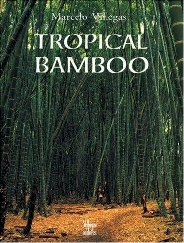 Download Tropical Bamboo