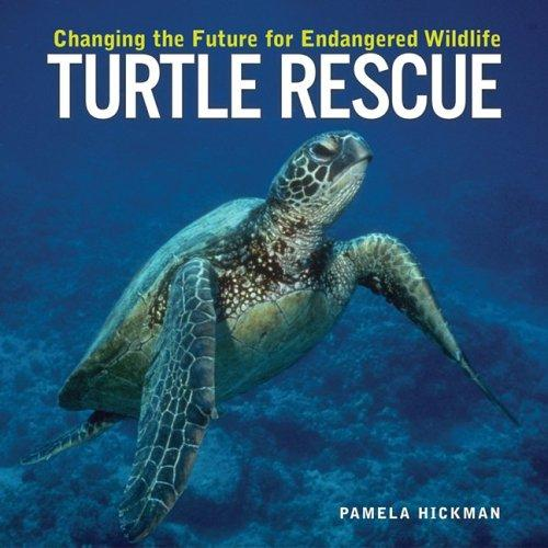 Download Turtle Rescue